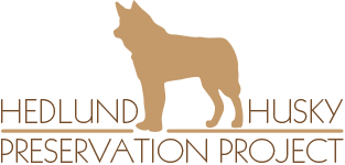Hedlund Husky Preservation Project
